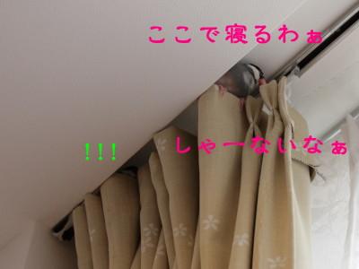 b0158061_21243029.jpg