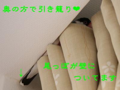 b0158061_21243846.jpg