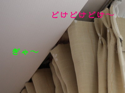 b0158061_21252923.jpg