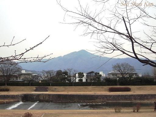 賀茂川 2013年2月1日_a0164068_22373173.jpg
