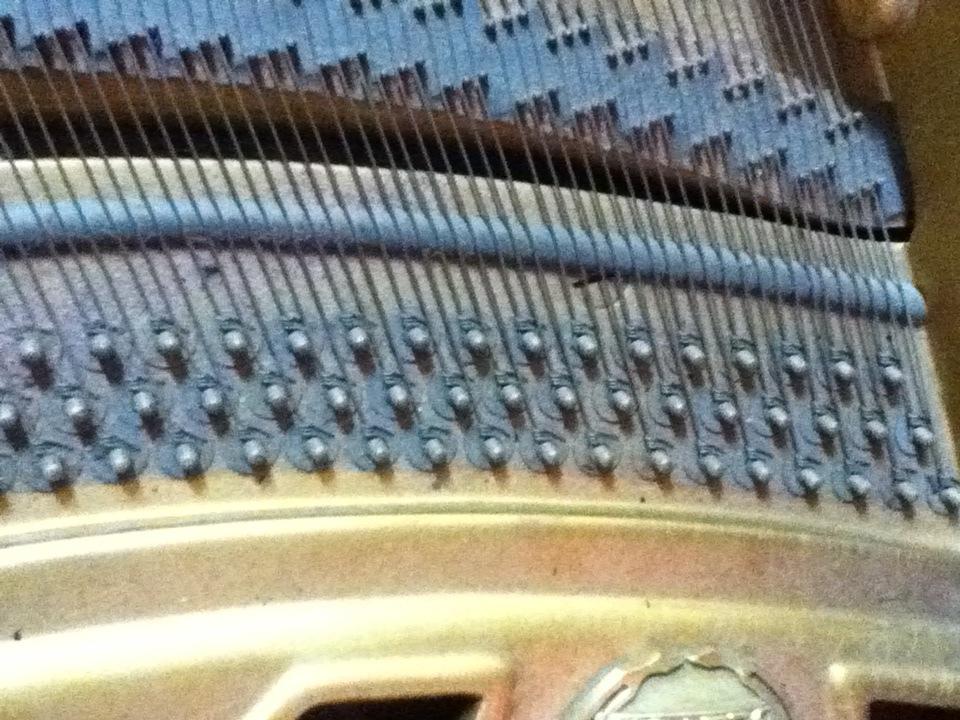 弦が一本止めのピアノ_d0164691_7361650.jpg
