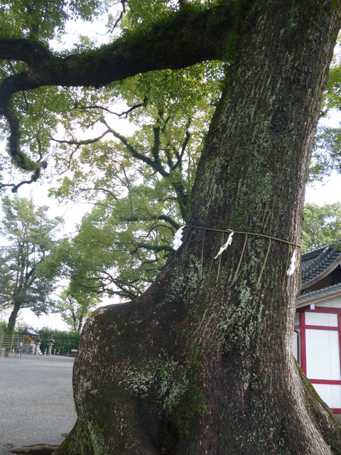 北岡神社の「良縁まいり」♪_b0228113_11172884.jpg