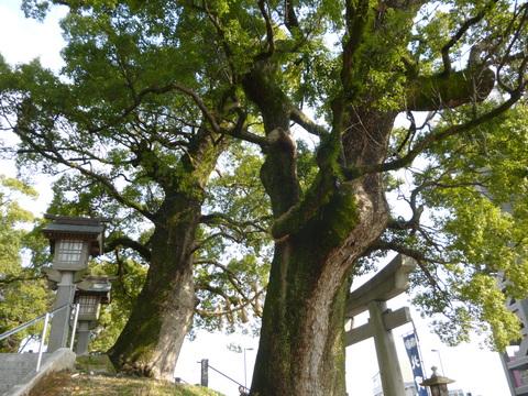 北岡神社の「良縁まいり」♪_b0228113_11233173.jpg