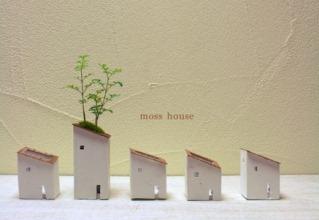 moss green ikkei さくら盆栽展のご案内_d0263815_14534715.jpg