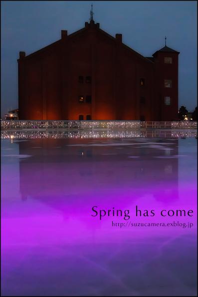 春が来た?_f0100215_0264784.jpg