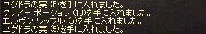 b0048563_23374627.jpg