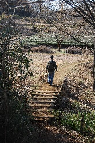 春を探しに…緑の森博物館へ_c0124100_21542398.jpg