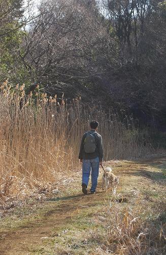 春を探しに…緑の森博物館へ_c0124100_21564364.jpg