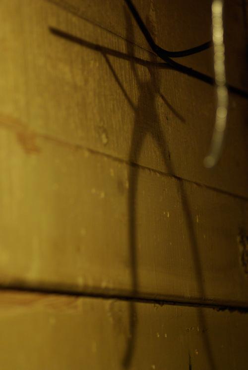 佐々倉 文 個展「鍋に鋏」【屋内篇(2)】_f0155808_22554111.jpg