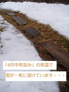 b0200310_1672119.jpg