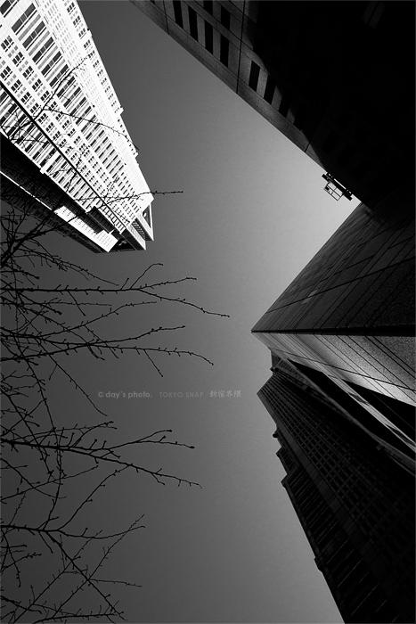 Tokyo Metropolitan Government_e0117517_2137.jpg