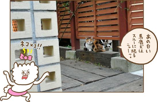 d0212419_20103147.jpg