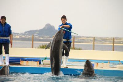 沖縄の旅 2_d0055236_13314432.jpg