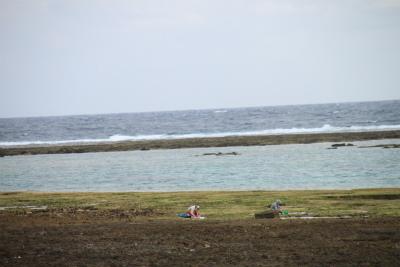 沖縄の旅 4_d0055236_17531572.jpg