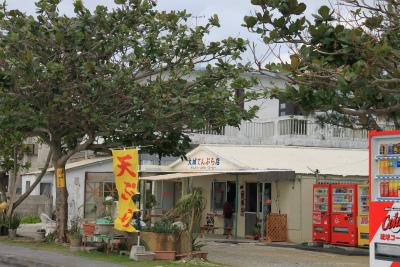 沖縄の旅 4_d0055236_17532942.jpg