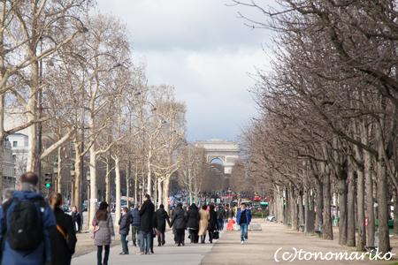 パリの春の兆し_c0024345_125415.jpg