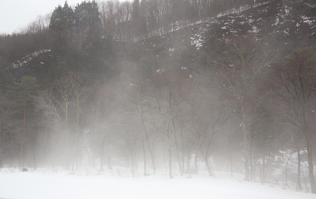 山に暮らせば_e0091879_23522512.jpg