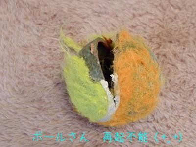 ゆめちゃん先生のゲージツ作品?!_f0062790_18443395.jpg