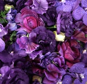 deep  purples_d0104091_17451823.jpg