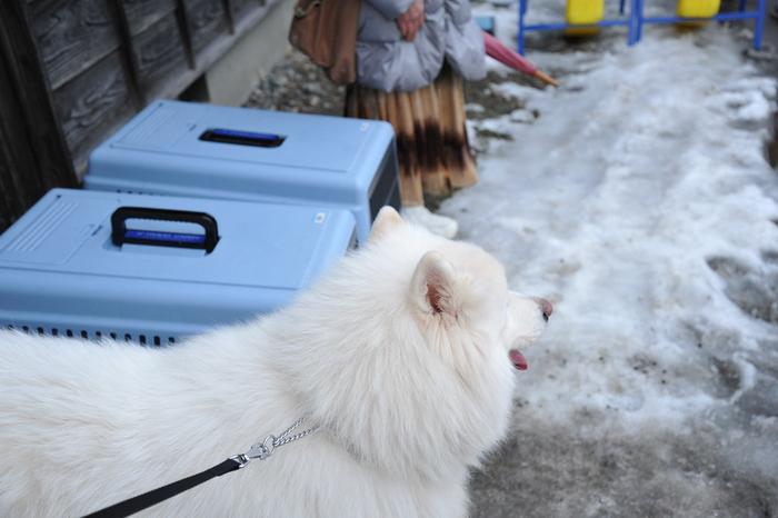 雪の岐阜へ part1_a0049296_1903710.jpg
