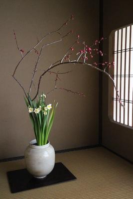 花だより_a0279848_2059188.jpg