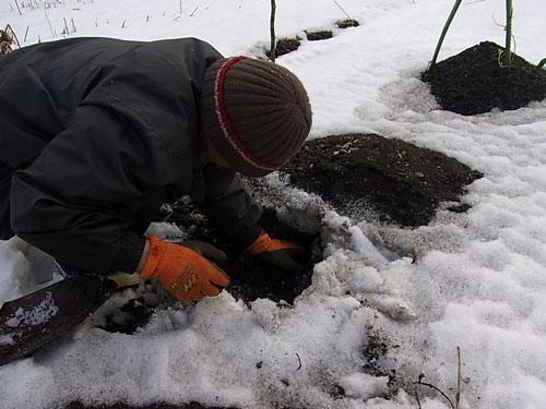 素敵な冬のリス似生活_f0236291_1037097.jpg
