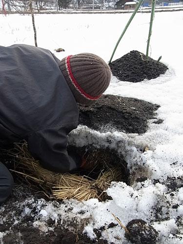 素敵な冬のリス似生活_f0236291_1038468.jpg
