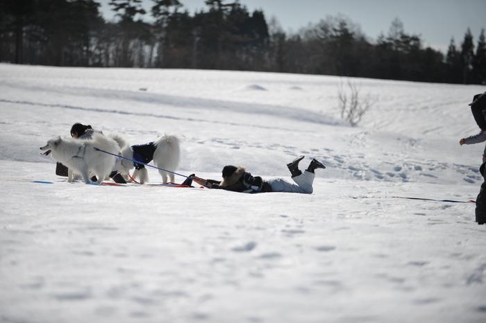 雪の岐阜へ part2_a0049296_6334694.jpg