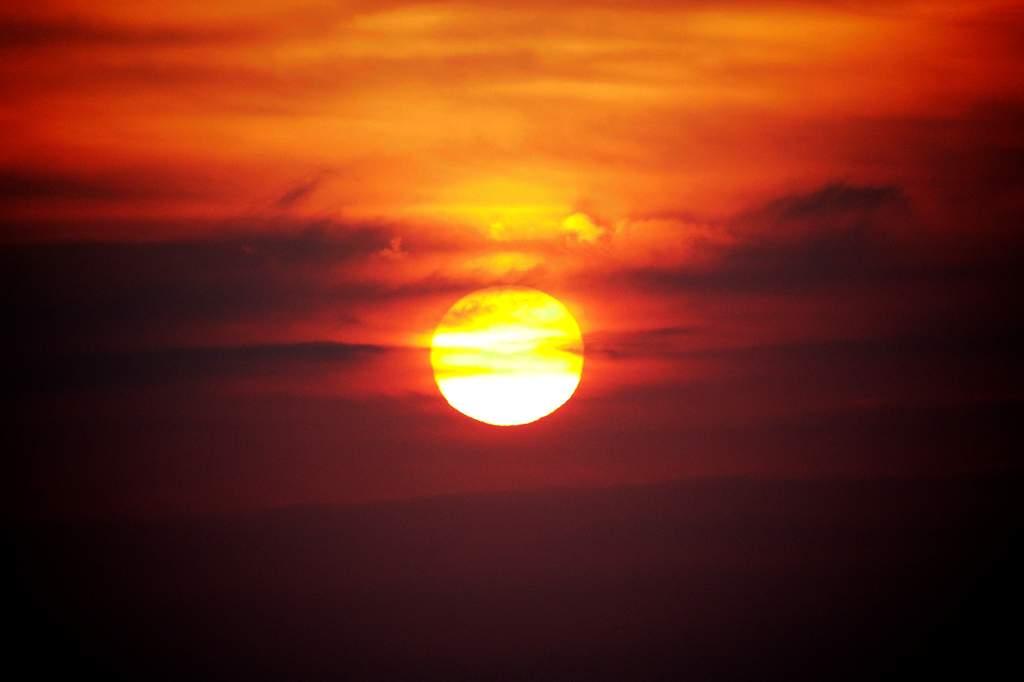 トラツグミ・HDR処理/海のオナガガモ/今朝の日の出_b0024798_20171486.jpg