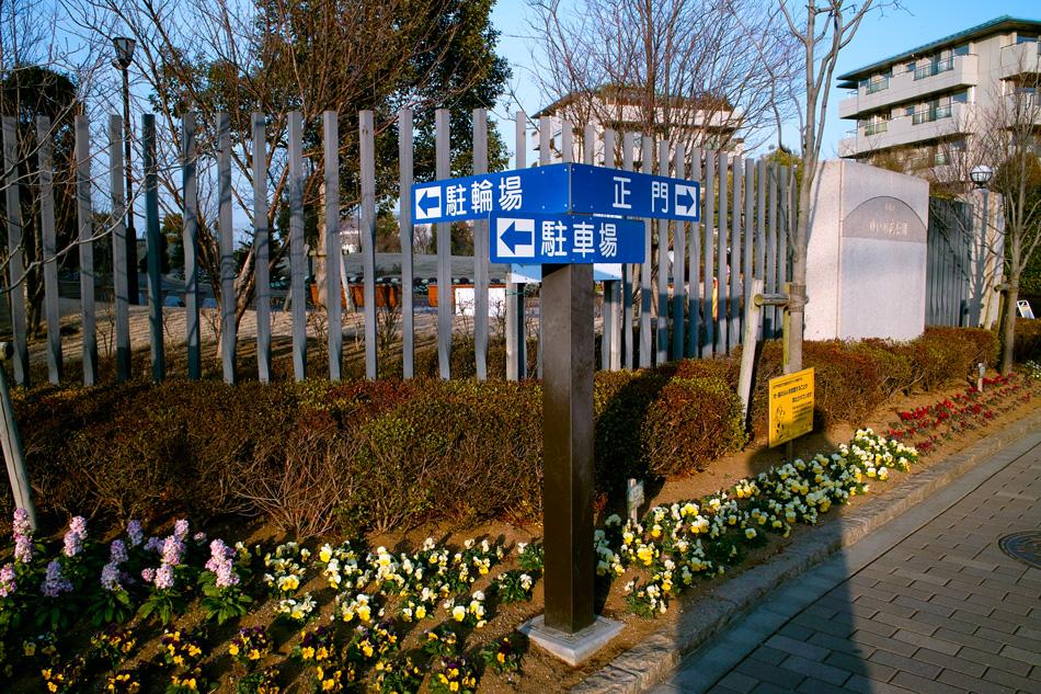 2月2日、初春のゆいの花公園_c0223825_019267.jpg
