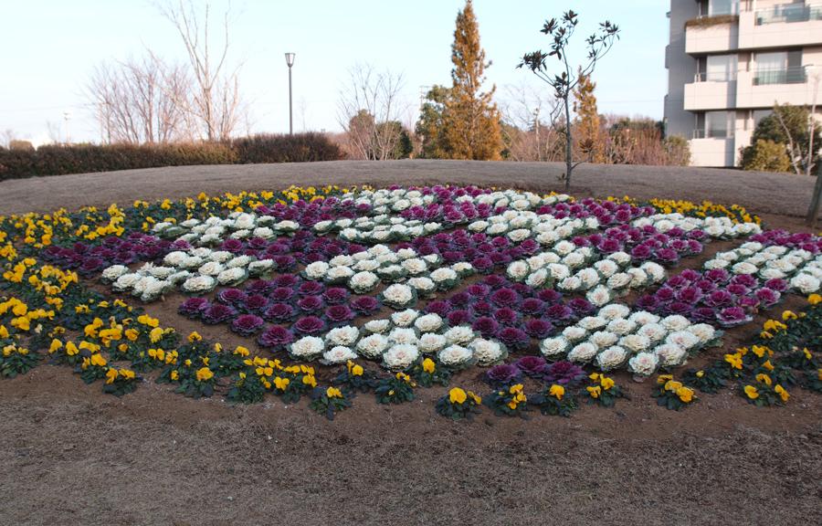 ゆいの花公園の梅が開花。_c0223825_21573942.jpg