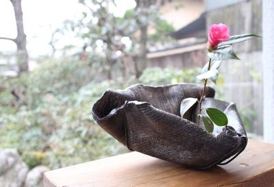 花だより_a0279848_19461651.jpg