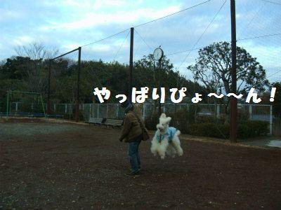 d0033151_10595277.jpg