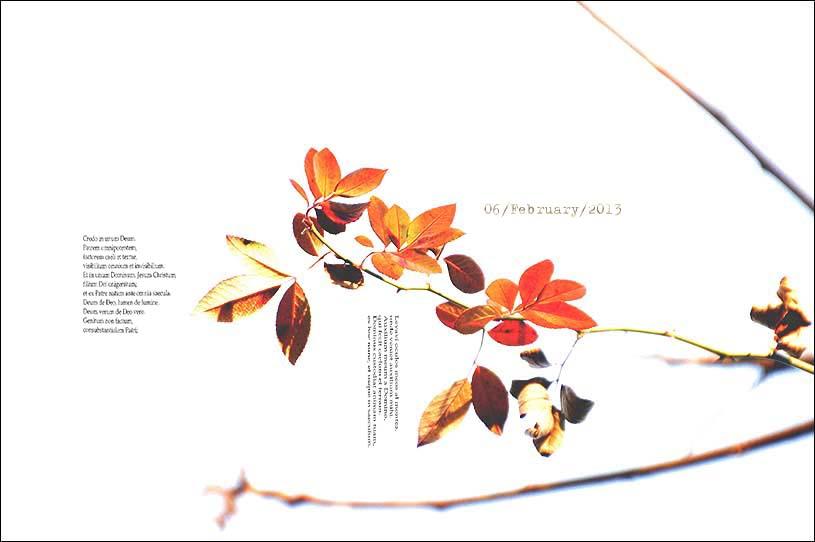f0198771_044019.jpg
