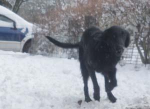 雪遊び〜 Part2_b0084194_1501680.jpg