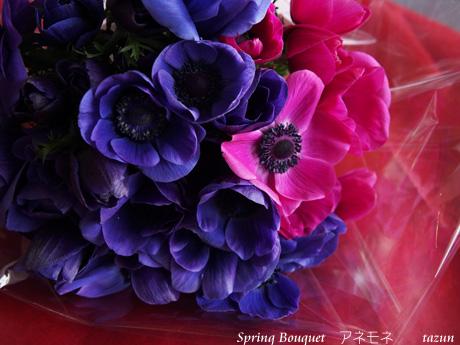 春フレッシュレッスン♪_d0144095_21571893.jpg