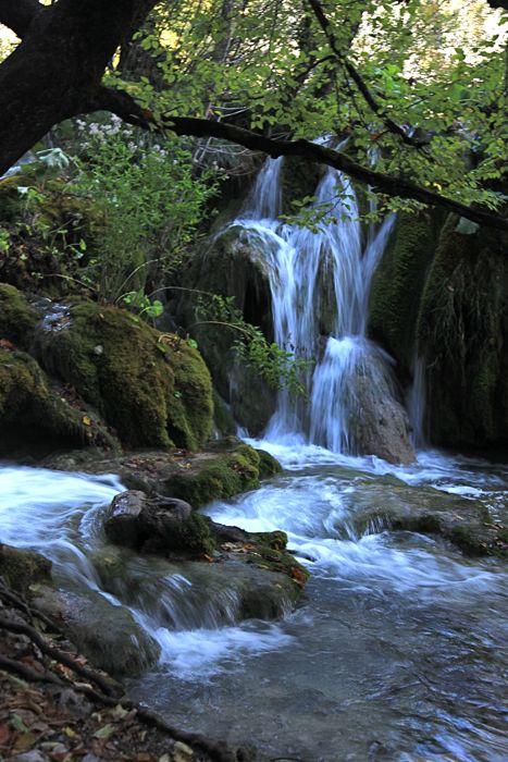 クロアチア(秋のプリトヴィツェ湖群国立公園)_d0148902_10131528.jpg