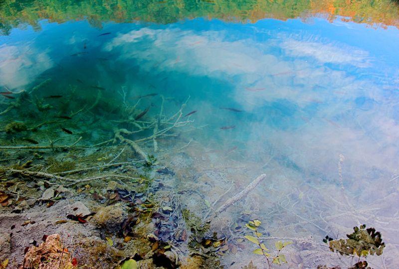 クロアチア(秋のプリトヴィツェ湖群国立公園)_d0148902_2221011.jpg