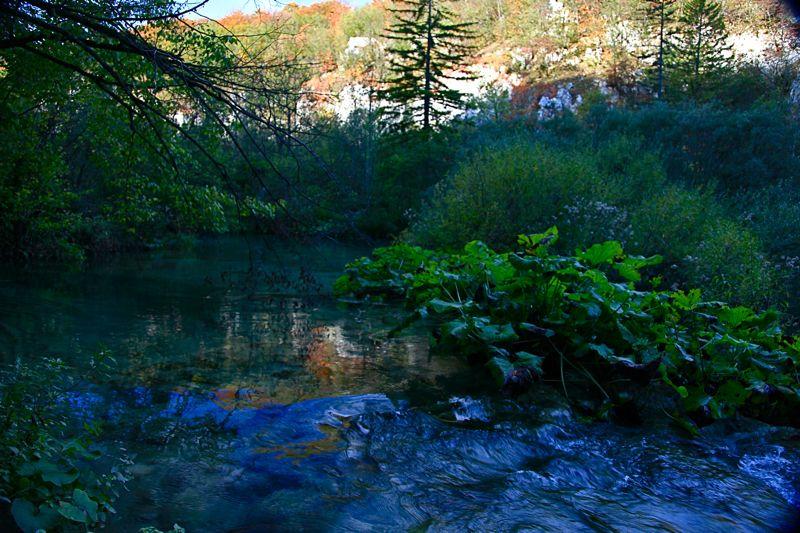 クロアチア(秋のプリトヴィツェ湖群国立公園)_d0148902_9525895.jpg