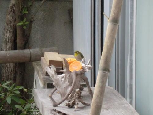 竹道具・小テーブル製作  by  「仁べ」_e0228405_20342092.jpg