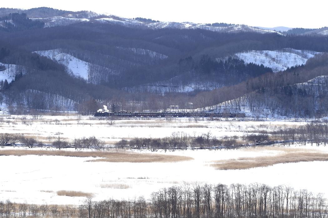 逆光の湿原と白煙 - 2013年冬・釧網本線 -  _b0190710_2162641.jpg