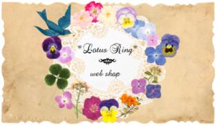 web shop 本日22:00にオープンします*_a0169912_16192499.png