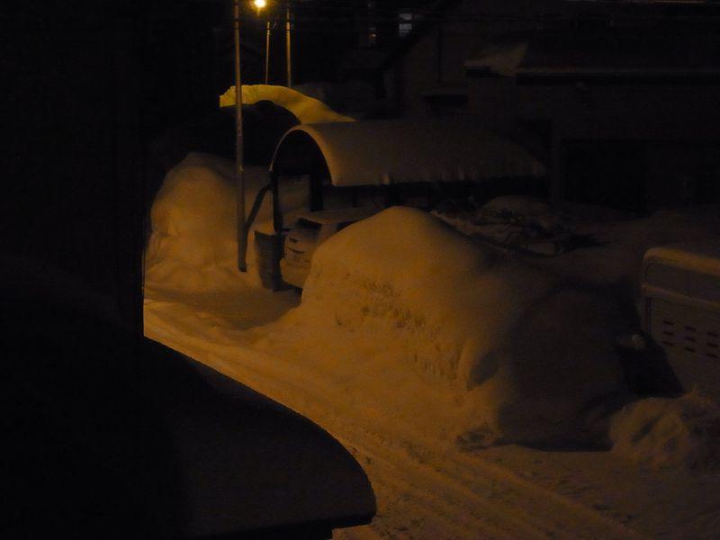 大雪警報_c0025115_22372847.jpg