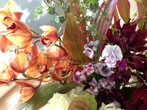 今週のお花とセール情報_a0200423_1920112.jpg