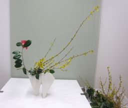 春のはじまりを告げる花_c0165824_22201258.jpg