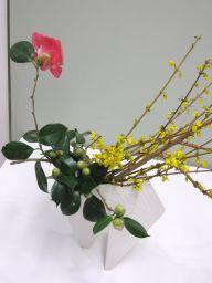春のはじまりを告げる花_c0165824_22212010.jpg