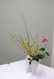 春のはじまりを告げる花_c0165824_2221536.jpg