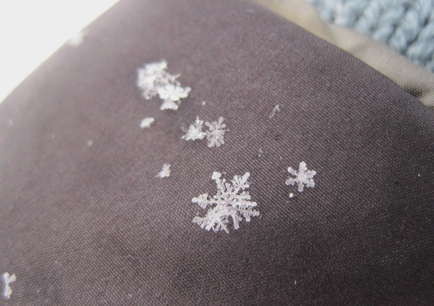 *雪の結晶*_f0236260_0534276.jpg