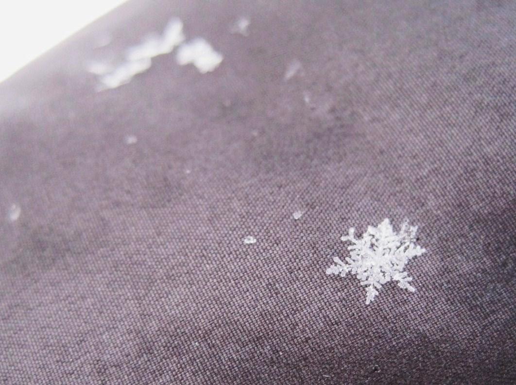 *雪の結晶*_f0236260_116067.jpg
