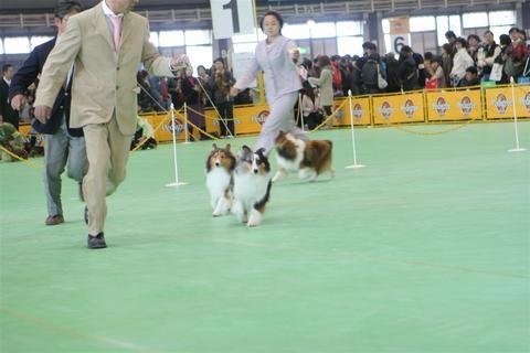 FCI神奈川インター_f0126965_14373375.jpg
